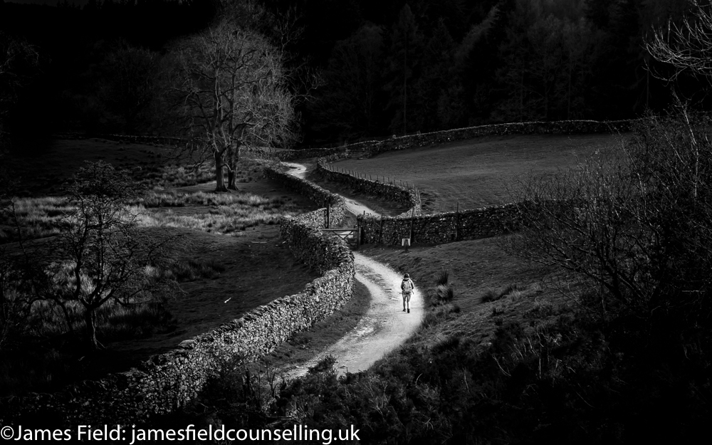 black and white photo showing a path in a dark landscape with a single walker in the distance